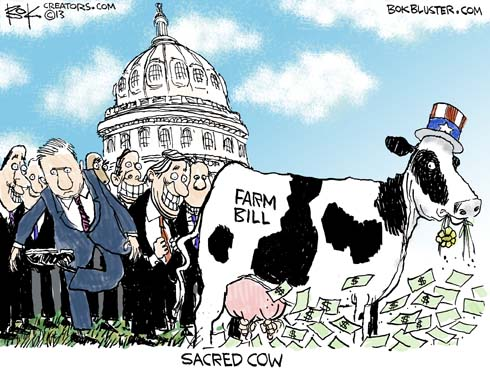 130620-sacred-cow-farm-cartoon-