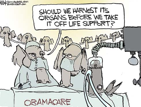 eviscerating obamacare