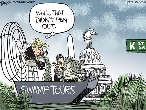 Washington Swamp