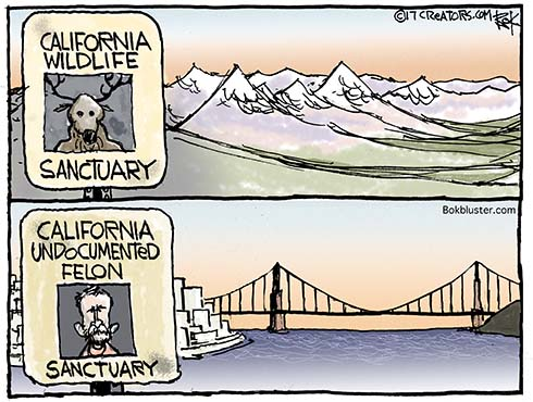 undocumented felon sanctuary