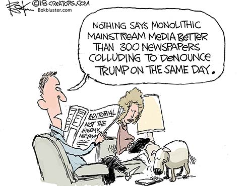 mainstream media, collude, denounce trump